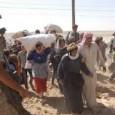 نداء إلى منظمات المجتمع المدني بخصوص معاناة أهلنا في كوباني مر أسبوعٌ على معاناة أهلنا الذي أجبروا على ترك منازلهم في عين العرب (كوباني)، هؤلاء الذين قذفت بهم يد الغدر […]